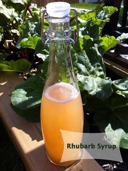 RhubarbSyrup
