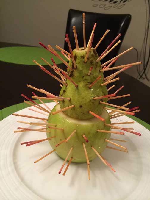 FruitTree_prep